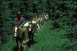 Pecos Wilderness Horse Ride